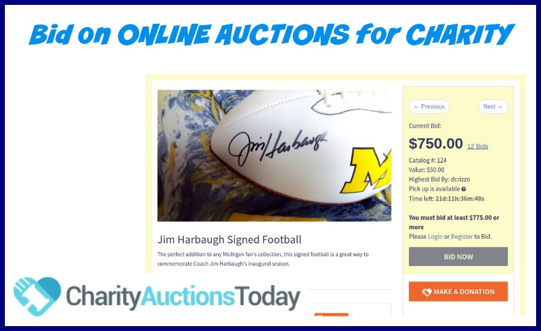 Online Auctions for Fundraising