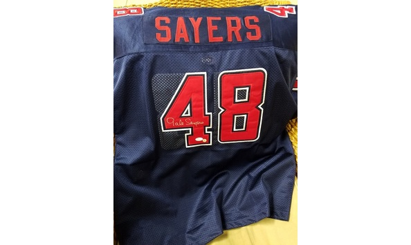 Online auction gale sayers jersey