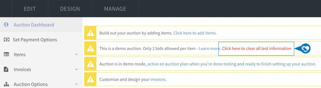 Test your Auction in Demo mode
