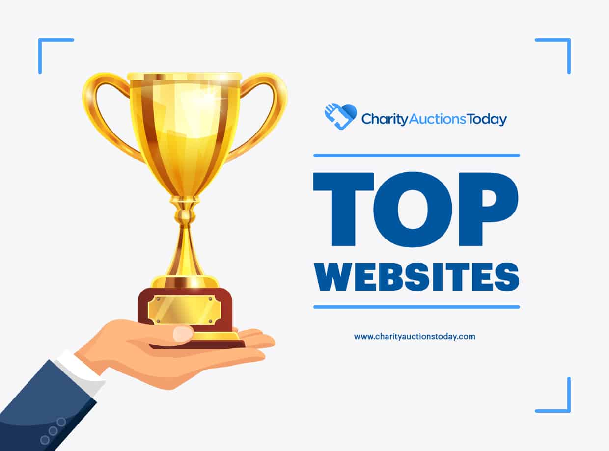 Top 12 Charity Auction Software Sites Complete Review 2019