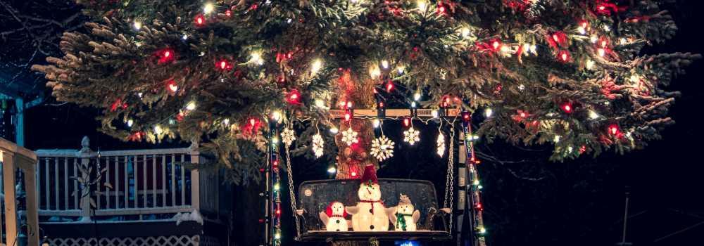 fundraising-ideas-sell-christmas-trees