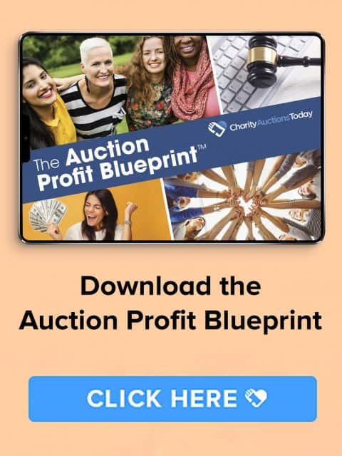 online-auctions-download-auction-profit-blueprint-image
